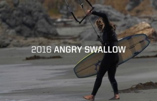 Slingshot Angry Swallow